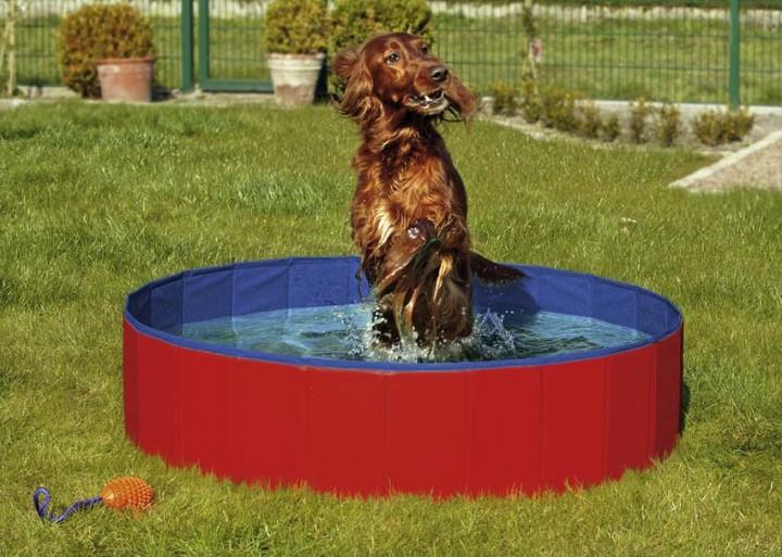 Doggy Pool 80 cm