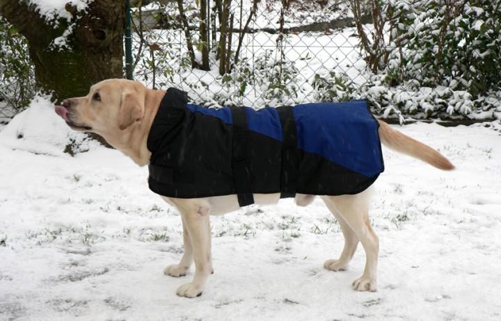 Hundemantel Polar 25cm